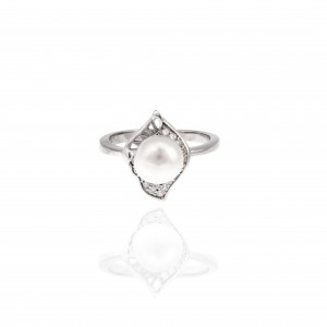 Sterling Silver 925 Single Stone Ring with Silver AJ (DA0074)