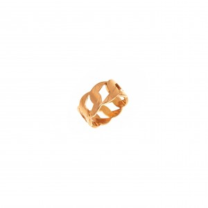 Ring-Chain from Steel to pink Gold AJ (DK0013RX)