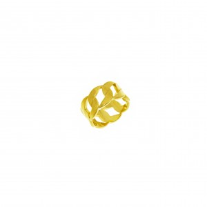 Ring-Chain from Steel to Yellow Gold AJ (DK0014X)