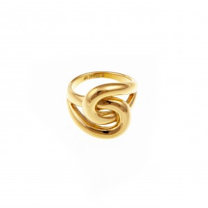Ring-Ladies from Steel in Yellow Gold AJ (DK0015X)