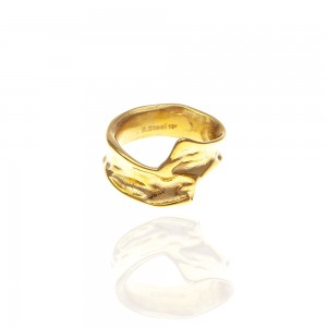 Ring-Ladies from Steel to Gold AJ (DK0043X)