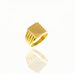 Men's Steel Ring in Yellow Gold AJ (DKS0030X)