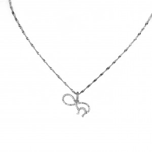 Infinity Sterling Silver Necklace and Petal Necklace 925