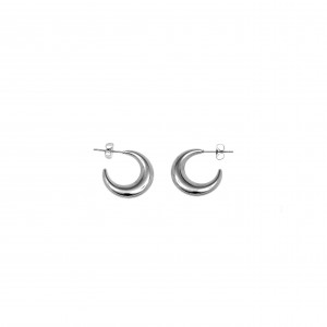 Women's Moon Earrings in Steel AJ (SKK0047A)
