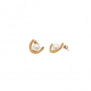 Earrings Steel Rings in Yellow Gold AJ (SKK0049X)